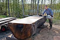 Produktchef Mattias Byström skivade upp den stora ekstocken med hjälp av Big Mill LSG.
