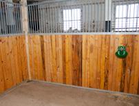 En av 18 nybyggda boxar i stallet. Virket är från egen skog och har behandlats med egenproducerad linolja.